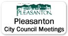 Pleasonton City Council